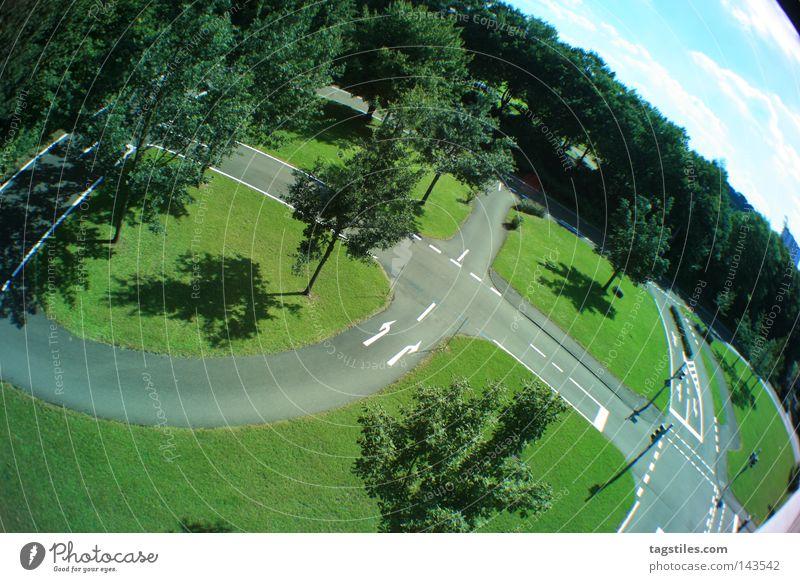 MINIATUR Baum grün Straße Linie Deutschland Vogelperspektive Kurve Ampel Biegung Straßennamenschild Miniatur Verkehrszeichen Motorsport Wölbung Wegbiegung