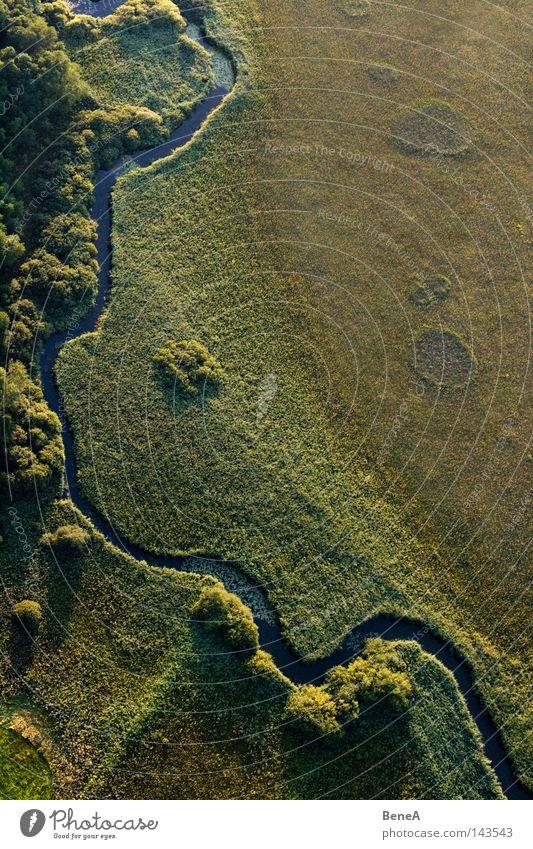 Bach Natur Wasser Baum grün blau Sommer Wiese Gras Landschaft Luft braun fliegen Luftverkehr Fluss Sträucher Schilfrohr