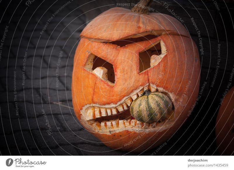 das Maul nicht zu voll nehmen Kürbis Freude harmonisch Ausflug Kunst Herbst Schönes Wetter Garten Bayern Deutschland Kleinstadt Maske beobachten Fressen