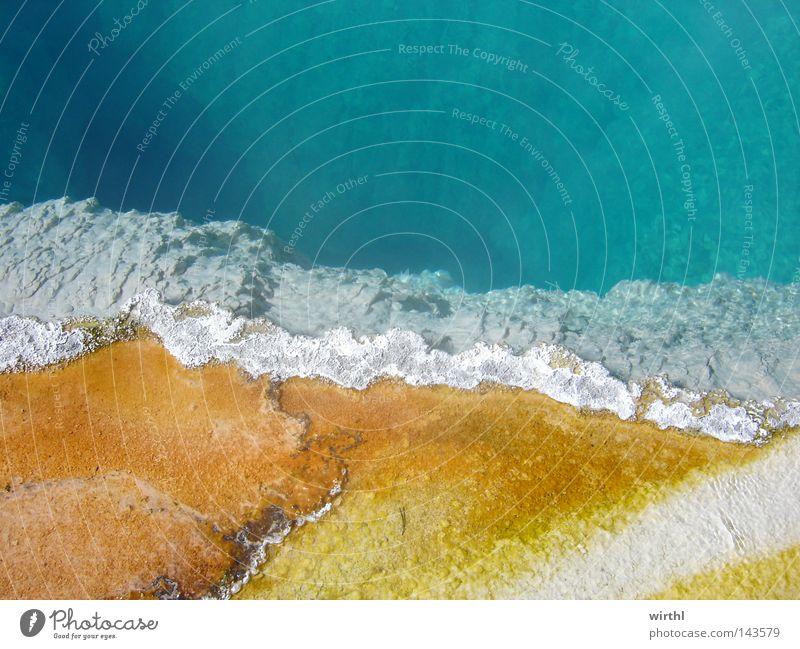Borderline Wasser schön Farbe nass USA heiß Neugier Seeufer Bildausschnitt Nationalpark Landschaftsformen interessant Geothermik mehrfarbig Naturschutzgebiet