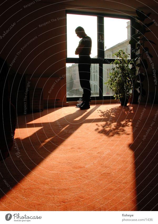 Am Fenster Mann Gegenlicht Mensch Sonne Silhouette Schatten
