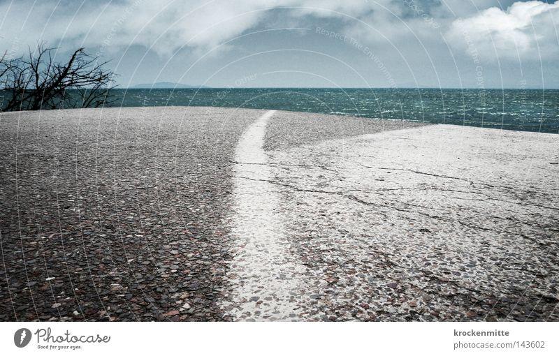 Straße ins Nirgendwo Linie weiß Asphalt Sträucher Wolken Himmel Meer Wasser Ende Zukunft Mittellinie Verkehr Pflanze fertig Einsamkeit Ferne fahren