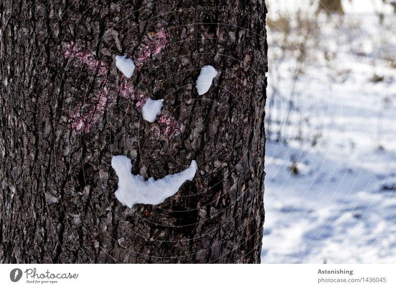 ein kühles Lächeln Gesicht Auge Nase Mund Umwelt Natur Landschaft Winter Eis Frost Schnee Schneefall Pflanze Baum Park Holz Blick Freundlichkeit Fröhlichkeit