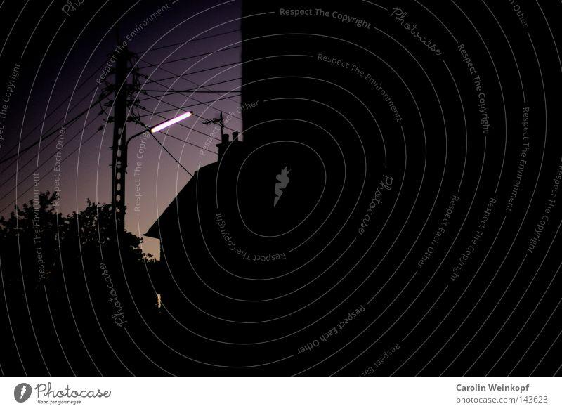 Neon. Elektrizität Strommast dunkel Baum Haus Dorf Nacht Abend Stadt Dämmerung schwarz Verkehrswege Kabel Abenddämmerung Himmel hell dämmern