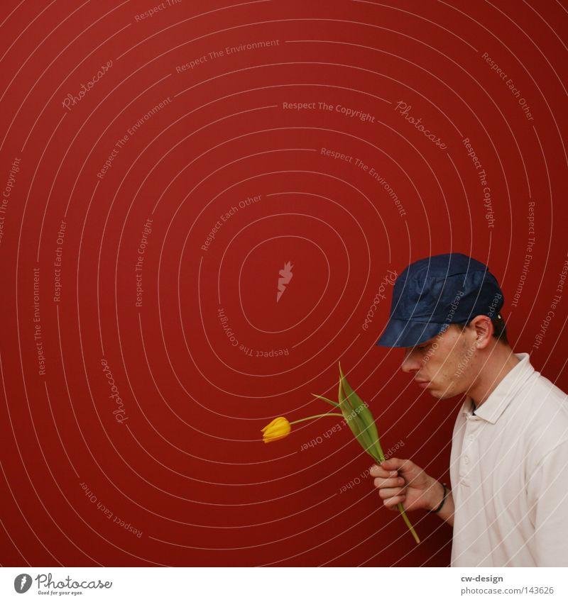 LOVE SUCKS Mann Natur blau grün weiß schön rot Pflanze Sommer Blume gelb Gefühle grau Blüte klein
