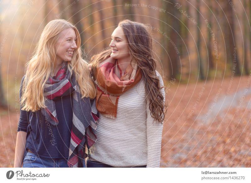 Zwei Freundinnen, die durch Herbstwaldland gehen Mensch Frau Natur Jugendliche Sonne Hand Blatt Freude Wald Gesicht Erwachsene Liebe Wege & Pfade Stil lachen