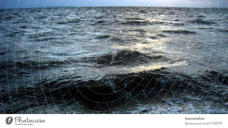 wasserschaden Wellen Strand Aussicht Sonnenuntergang nass Sand Limfjord Ferien & Urlaub & Reisen Ebene schön träumen Sommer Europa Küste Wasser Himmel