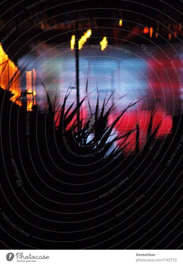 Nachts in Karlsruhe Wasser dunkel See Stimmung Wohnung Musik sitzen Spiegel Konzert Lichtpunkt Nacht
