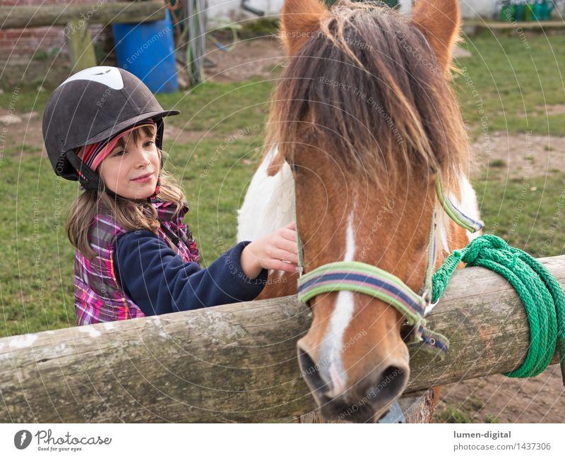 Mädchen mit Pony Kind Natur Tier Liebe Holz Lifestyle Freundschaft Kindheit Fröhlichkeit Pferd Bauernhof Landleben Mähne Reitsport Kaukasier