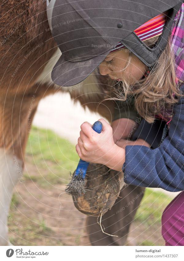 Mädchen mit Pferdehuf Mensch Kind Natur Ferien & Urlaub & Reisen Hand Tier Freude Herbst Liebe Glück Lifestyle Kopf Freundschaft glänzend Park