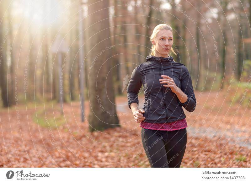 Junge Frau des hübschen Sitzes, die im Waldland rüttelt Mensch Natur Jugendliche 18-30 Jahre Gesicht Erwachsene Herbst Sport Lifestyle frisch Körper blond