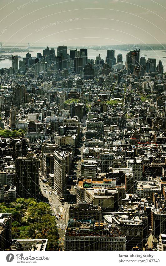 Downtown Himmel Stadt Haus Wolken Arbeit & Erwerbstätigkeit fliegen groß Hochhaus USA Fluss Bank Aussicht Brooklyn Amerika Skyline