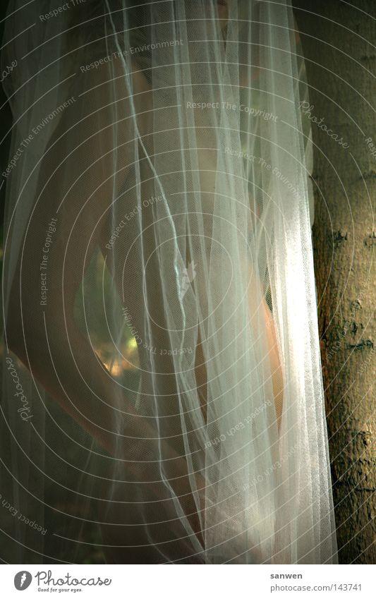 schleierhaft Frau Frauenkörper nackt Gelenk Schleier Licht Lichteinfall Baum Baumstamm Hinterteil Erotik zart schön Haut Arme Bauch Brust Haare & Frisuren