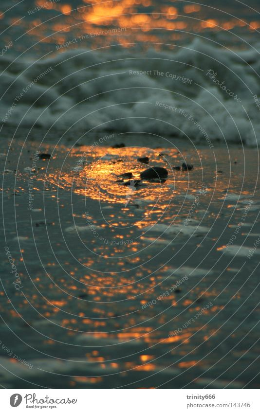 Auf den Spuren der Sonne Meer Physik kalt Wellen Schaum Wasser Wärme Detailaufnahme