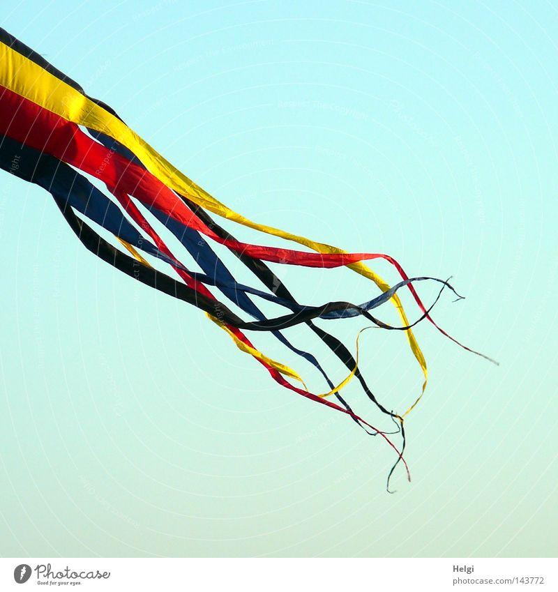 flatterhaft... Himmel blau rot Freude schwarz Farbe gelb Spielen oben Luft Wetter Zusammensein Wind Freizeit & Hobby fliegen hoch