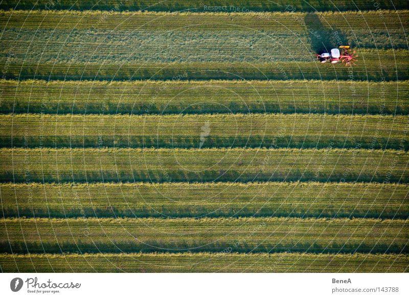 Mr. Tractor Driver Traktor Landwirtschaft Nutzfahrzeug Fahrzeug Feld Wiese grün Linie Symmetrie Geometrie Arbeit & Erwerbstätigkeit Erzeuger Schatten Abendsonne