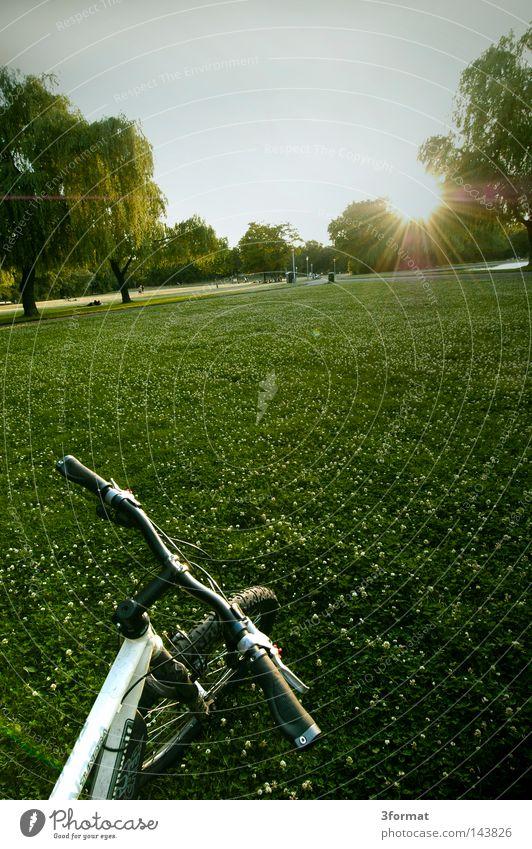 radstop Himmel Ferien & Urlaub & Reisen grün Sommer Baum Pflanze Sonne Wolken Wiese Graffiti Wärme Gras Freiheit Garten hell Park