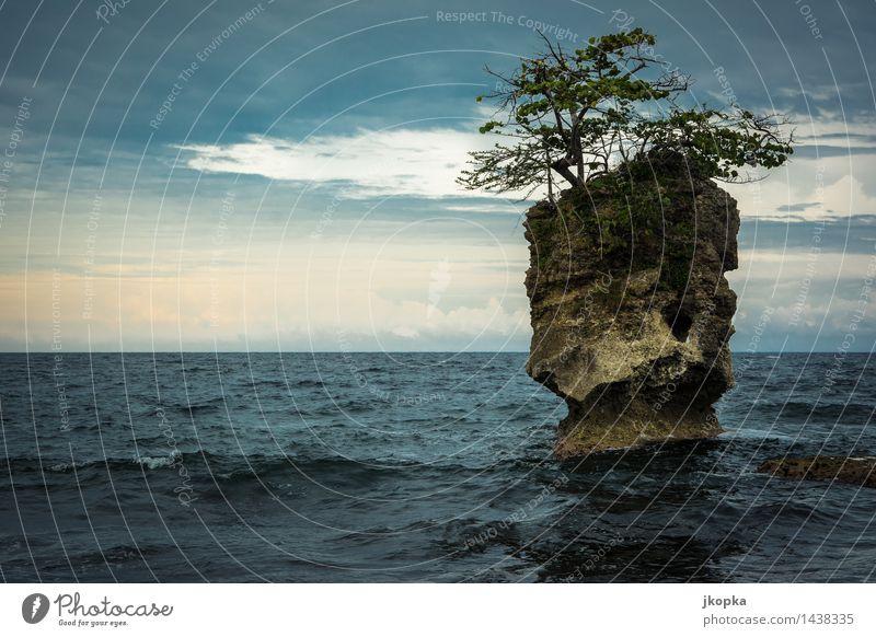 Insel der Natur Ferne Freiheit Meer Wellen Landschaft Urelemente Wasser Himmel Wolken Sonnenlicht Wetter schlechtes Wetter Baum Felsen Küste Riff