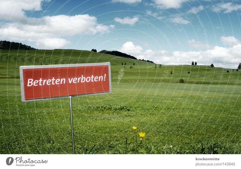 Verbotene Zone Himmel Baum Blume grün blau rot Wolken Wiese Gras Schilder & Markierungen leer Rasen Sportrasen stoppen Hügel Hinweisschild