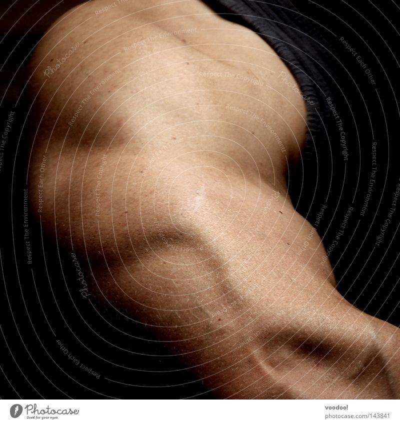 Musculus triceps brachii Gesundheit Kraft Arme Haut maskulin Körperhaltung sportlich Sport-Training Muskulatur Bildausschnitt Anschnitt Anatomie Anspannung