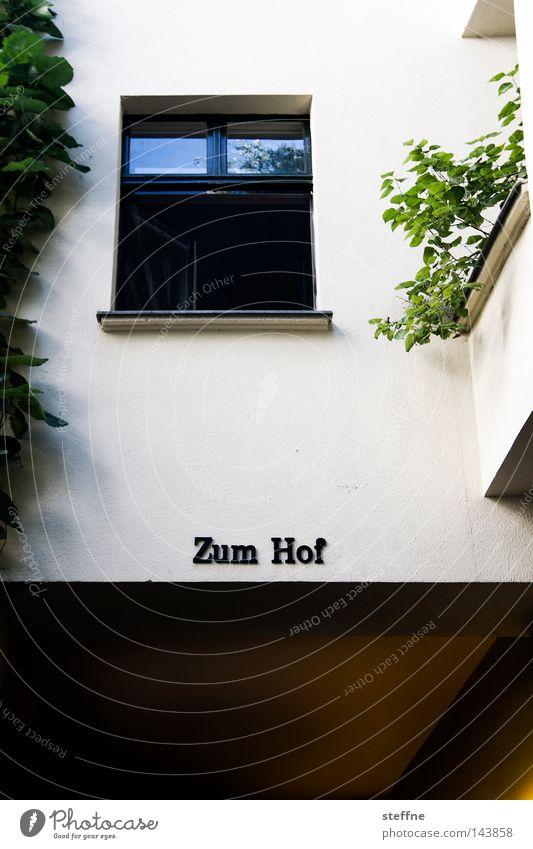 Fenster zum Hof Innenhof Stadt Haus Stadtteil