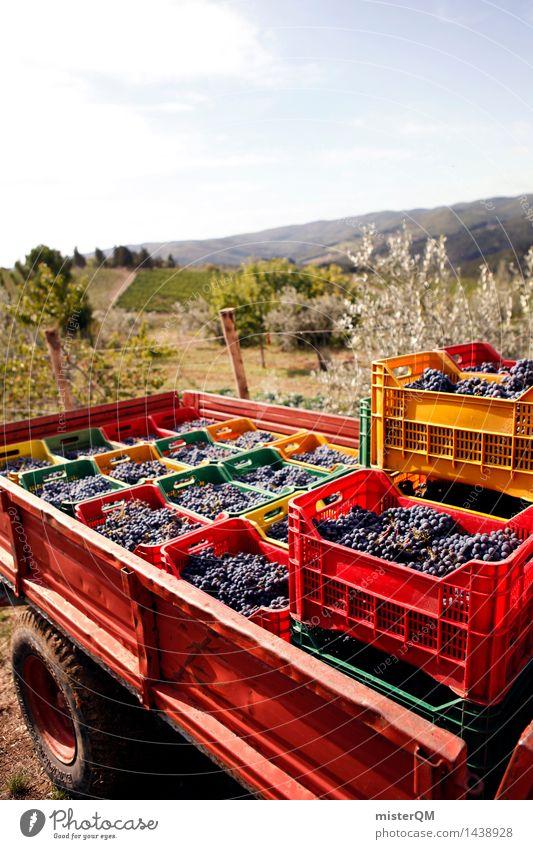 Sangiovese III Kunst Kunstwerk ästhetisch Wein Weinberg Weinbau Weintrauben Weinlese Weingut Kiste viele Ernte verpackt Landschaft Italien Toskana Chianti