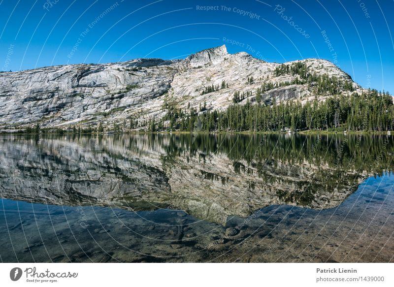 verspiegelt Himmel Natur Ferien & Urlaub & Reisen grün Sommer Baum Erholung Landschaft ruhig Ferne Berge u. Gebirge Umwelt Lifestyle Freiheit See Zufriedenheit