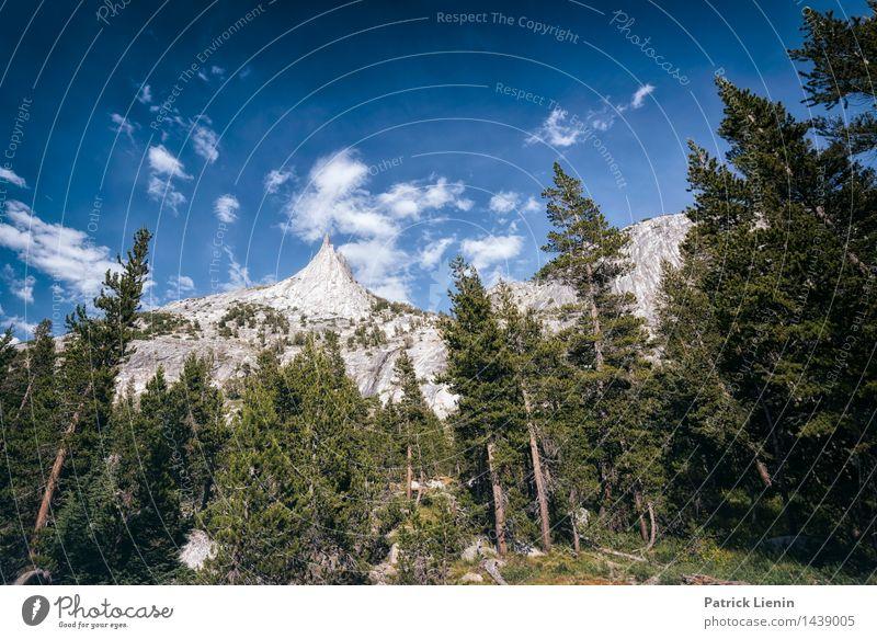 Cathedral Peak Wohlgefühl Zufriedenheit Ferien & Urlaub & Reisen Ausflug Abenteuer Freiheit Expedition Camping Berge u. Gebirge wandern Umwelt Natur Landschaft
