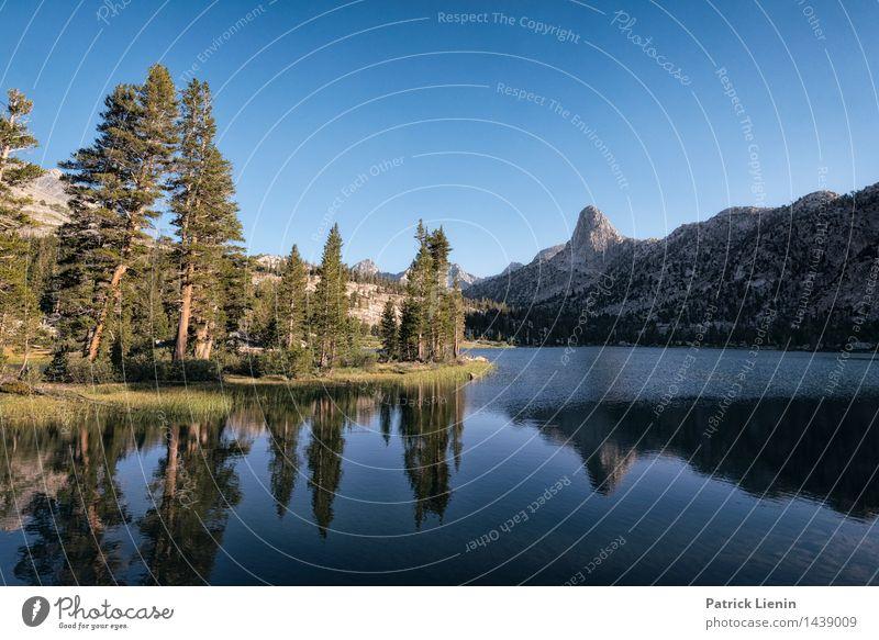 Arrowhead Lake Himmel Natur Ferien & Urlaub & Reisen Pflanze Sommer Wasser Baum Landschaft Einsamkeit Ferne Wald Berge u. Gebirge Umwelt Küste See Felsen