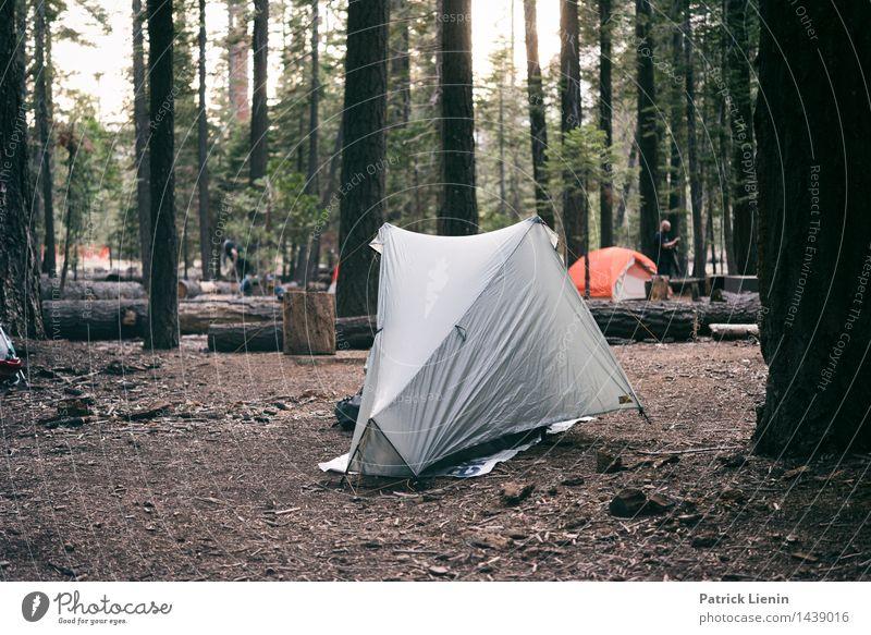 Yosemite Valley Camping Natur Ferien & Urlaub & Reisen Sommer Erholung Landschaft ruhig Ferne Wald Berge u. Gebirge Umwelt Lifestyle Freiheit Tourismus