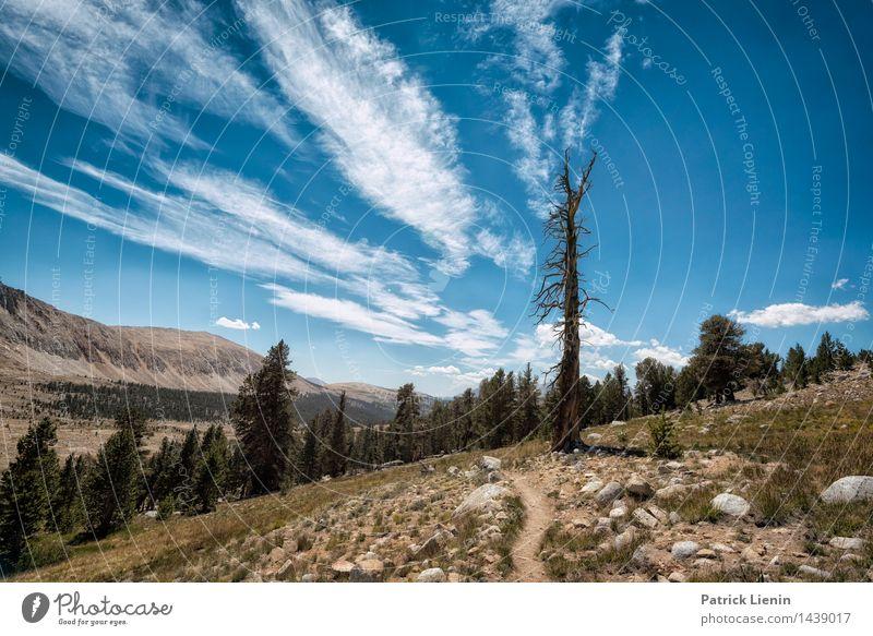 Immer weiter gehen Wellness Zufriedenheit Sinnesorgane Erholung ruhig Ferien & Urlaub & Reisen Tourismus Ausflug Abenteuer Ferne Freiheit wandern Umwelt Natur