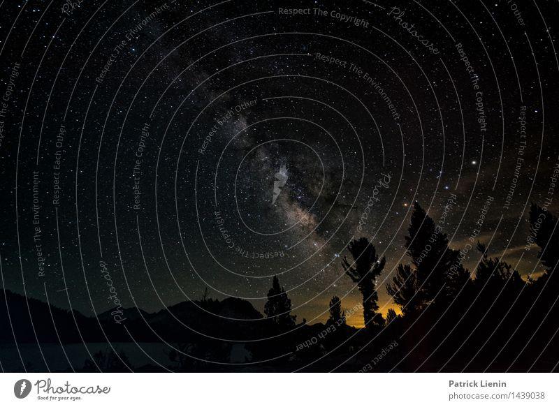 Nachtschicht (4) harmonisch Wohlgefühl Zufriedenheit Sinnesorgane Erholung ruhig Meditation Ferien & Urlaub & Reisen Abenteuer Ferne Freiheit Camping Umwelt