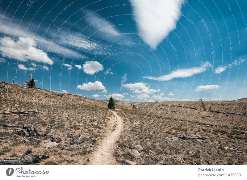Wolkenland Himmel Natur Ferien & Urlaub & Reisen Sommer Erholung Landschaft Einsamkeit Ferne Berge u. Gebirge Umwelt Freiheit Zufriedenheit Wetter wandern