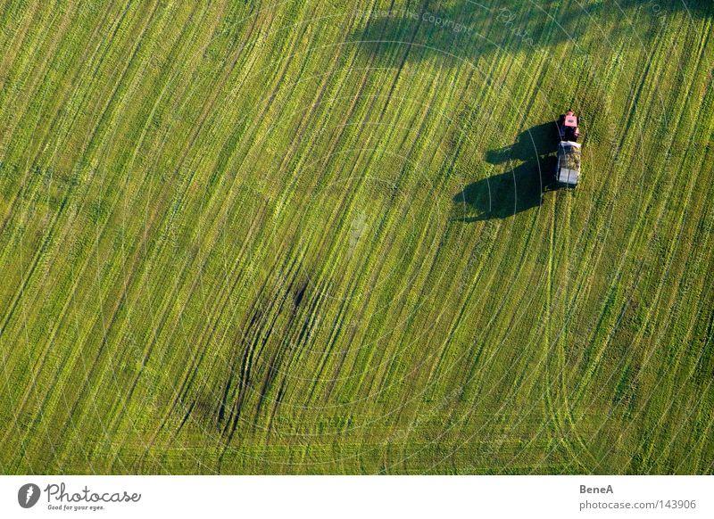 Mr. Tractor Driver 2 Natur grün rot Landschaft Wiese Ernährung Lebensmittel Gras Linie Arbeit & Erwerbstätigkeit Feld Technik & Technologie Alpen Landwirtschaft