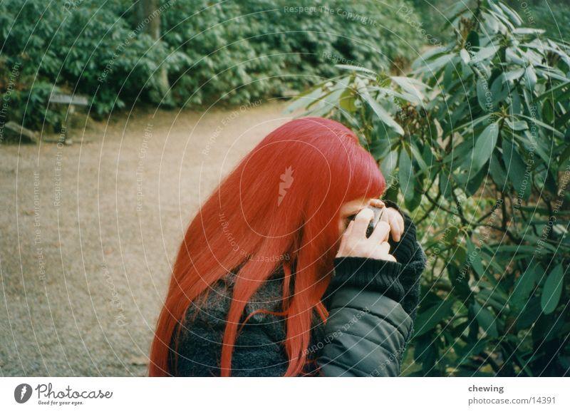 me rot grün Frau Haare & Frisuren Pflanze Wege & Pfade eine person