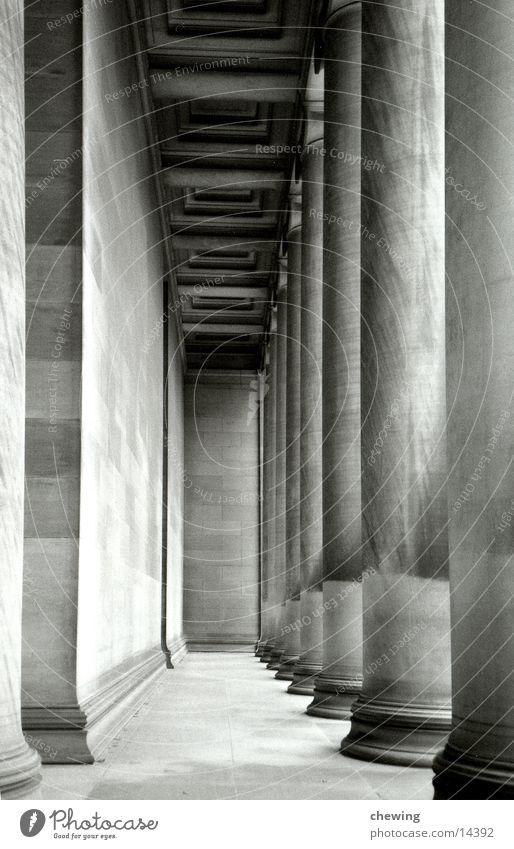 säulen Tunnel historisch Architektur Säule Stein Schwarzweißfoto tief USA