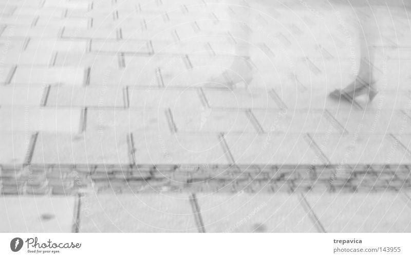 asphalt Stadt Beton grau Asphalt Frau gehen passieren Richtung Schuhe durchsichtig Geister u. Gespenster falsch Zeit Mensch Straße Bodenbelag Schwarzweißfoto