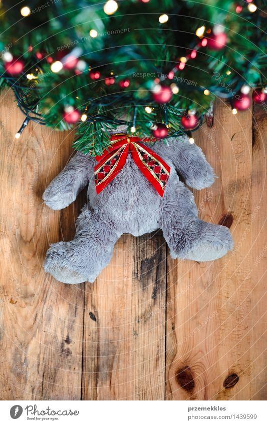 Teddybär unter dem Weihnachtsbaum Dekoration & Verzierung Weihnachten & Advent Baum Spielzeug Holz Tradition Bär Gast Textfreiraum Dezember Etage Geschenk