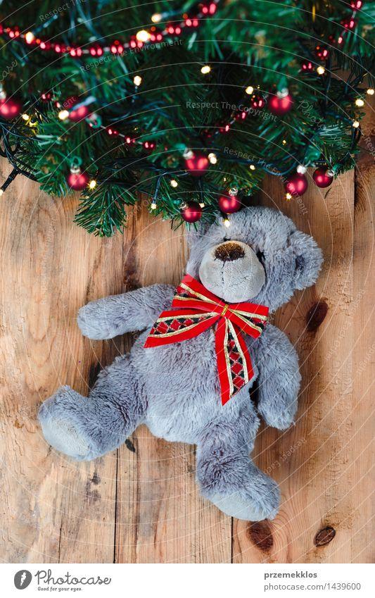 Teddybär unter dem Weihnachtsbaum Dekoration & Verzierung Weihnachten & Advent Baum Spielzeug Holz Tradition Bär Gast Dezember Etage Geschenk Feiertag heimwärts