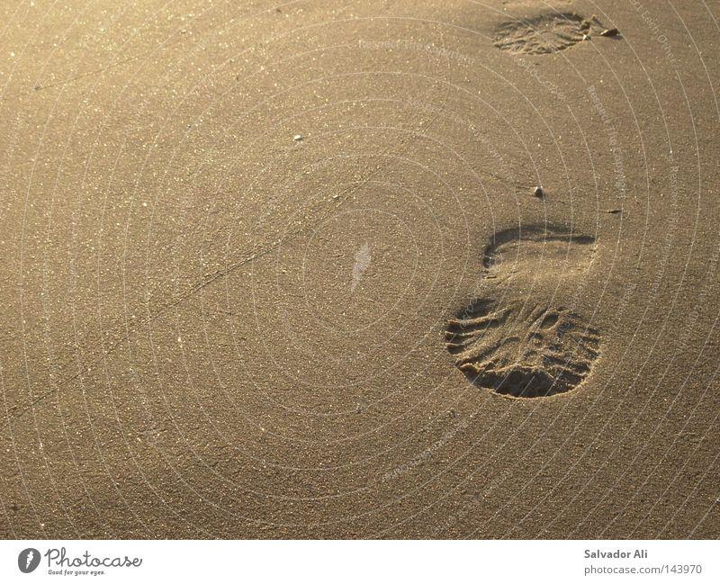 du und deine Profilierung Natur schön Strand Erholung Sand Küste braun gehen Vergänglichkeit Spaziergang Spuren Fußspur beige körnig