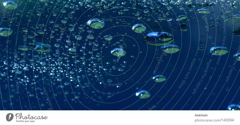 more drops Wasser Himmel weiß grün blau Pflanze Sommer Regen glänzend Glas Hintergrundbild Wassertropfen nass Sträucher Dinge türkis