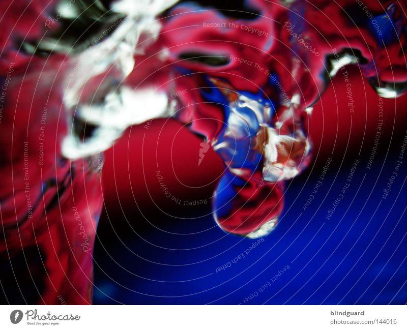 Colorful Wetness Wasser weiß blau rot Sommer Freude schwarz Lampe Spielen Wärme Beleuchtung rosa Glas nass Wassertropfen frisch