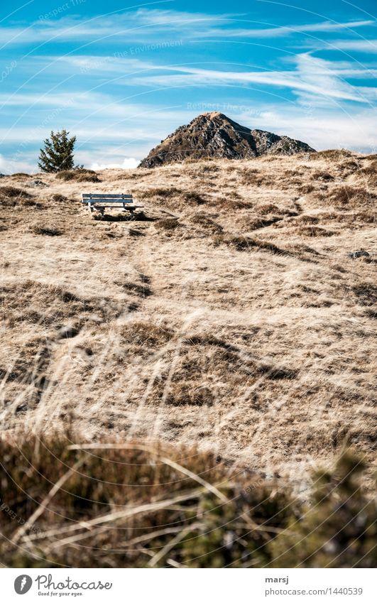 Herbstruhe-Bank Natur Wiese Felsen Berge u. Gebirge Schoberspitz Bergwiese Erholung ruhig Traurigkeit trist Einsamkeit Farbfoto Gedeckte Farben Außenaufnahme