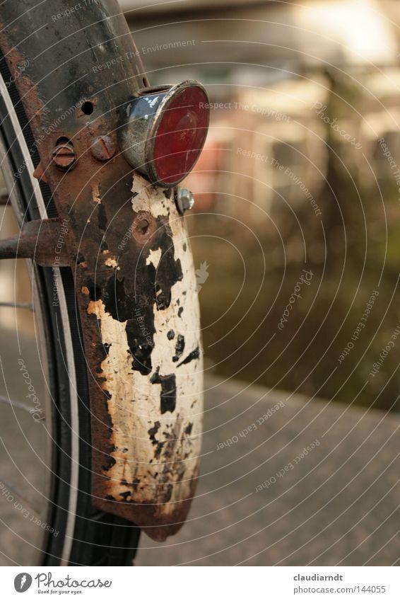 Rostlaube alt Fahrrad Vergänglichkeit Rad Rost Reifen verwittert Speichen Schutzblech Reflektor Katzenauge Oxidation Zahn der Zeit Fahrradrücklicht