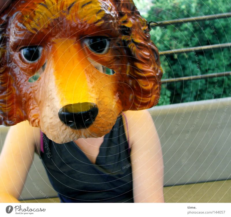 Making Of 'So What ...' [La Chamandu] Freude Karneval Arme Bekleidung Kleid Maske Hund verrückt Idee verkleiden Farbfoto Außenaufnahme Nahaufnahme