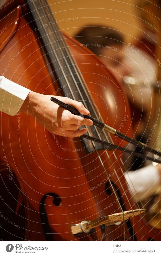 Tiefe Töne Musik streichen Konzert Bühne Musiker Orchester Kontrabass Elektrobass Musik hören Streichinstrumente Musikunterricht