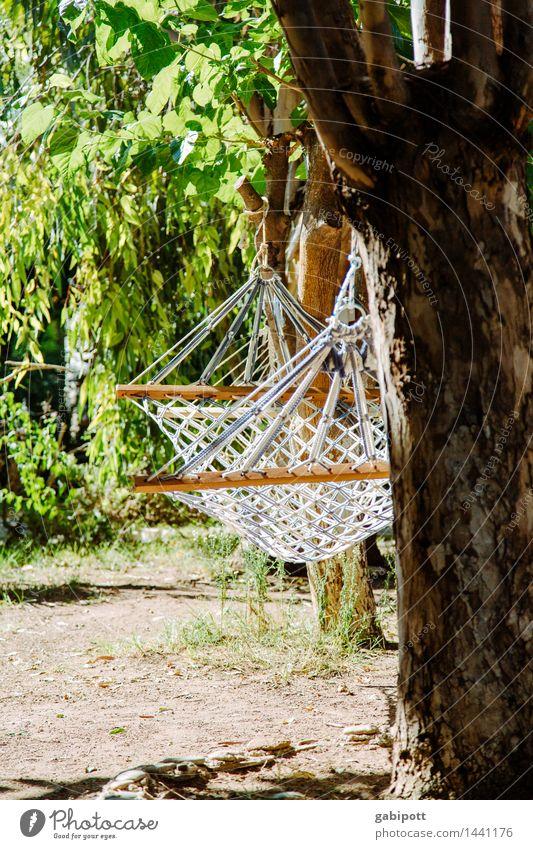 Entspannte Feiertage wären doch schön Natur Ferien & Urlaub & Reisen Sommer Sonne Meer Erholung ruhig Ferne Strand Glück Lifestyle Freiheit Wohnung
