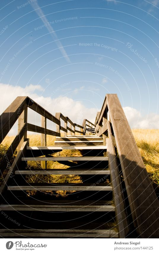 Dünenwanderung Holz Wege & Pfade Himmel Wolken Kondensstreifen Treppengeländer Brückengeländer Stranddüne Wenningstedt Sylt Spaziergang Küste