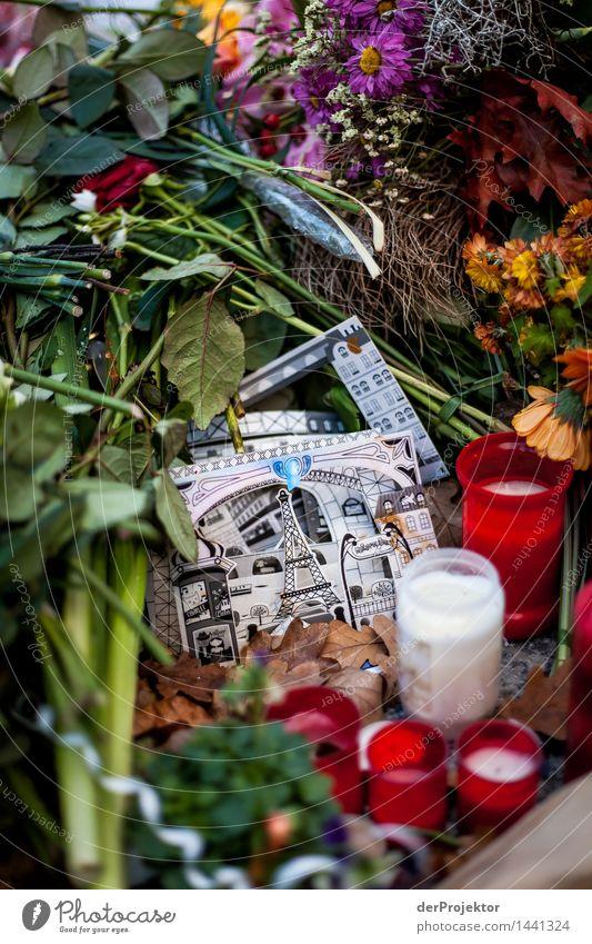 Gedenken an Paris Natur Pflanze Blatt Traurigkeit Blüte Tod Trauer Kerze Wut Wahrzeichen Denkmal Hauptstadt Sehenswürdigkeit Müdigkeit Sorge Zeichnung