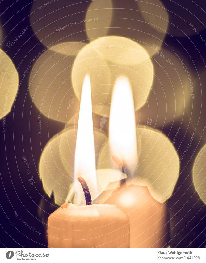 2. Advent Weihnachten & Advent Winter leuchten schön braun gold orange schwarz weiß ruhig Kerze Kerzenschein Kerzendocht Romantik brennen Farbfoto Nahaufnahme